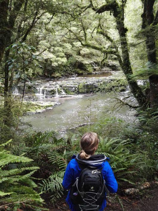 Bushwalk entlang dem Catlins River