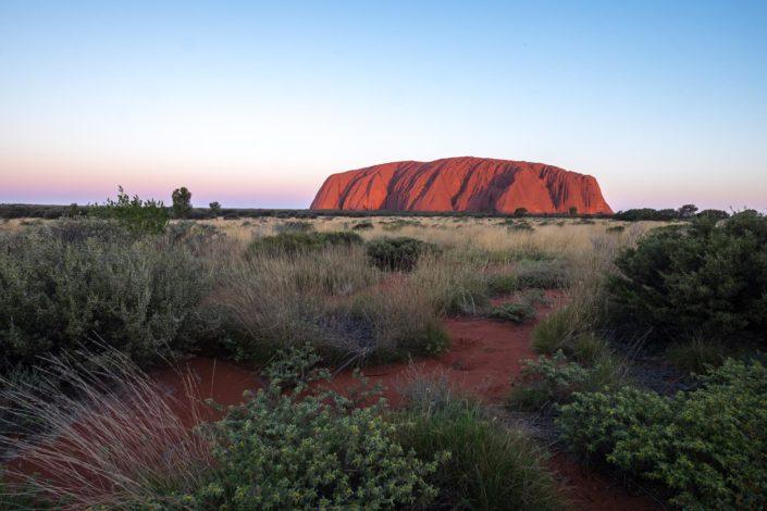 Der Uluru im Abendlicht