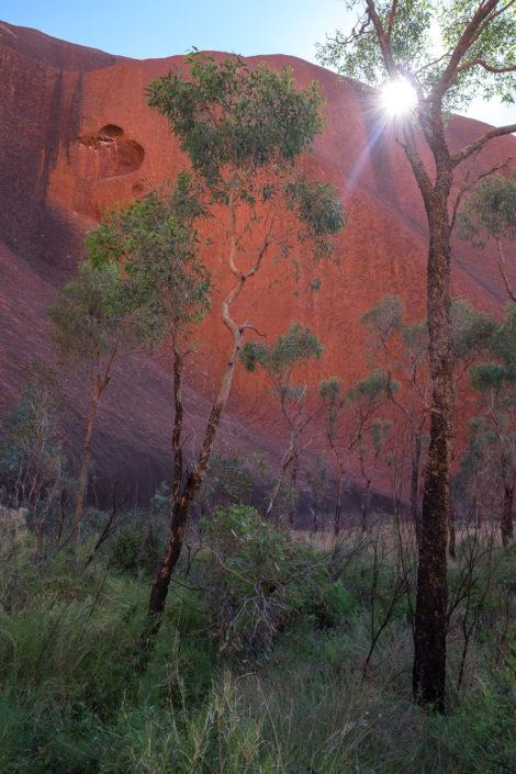 Der Uluru zum greifen nah