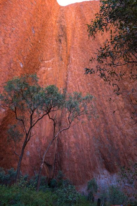 Tour am Uluru
