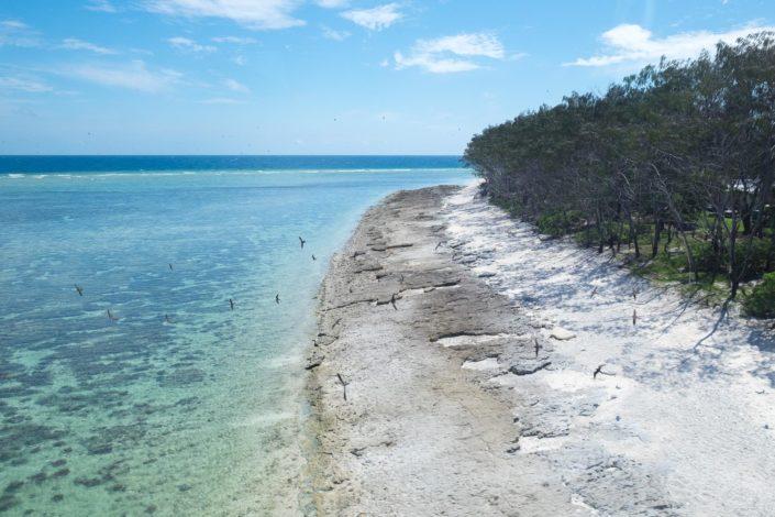 Anflug auf Lady Elliot Island
